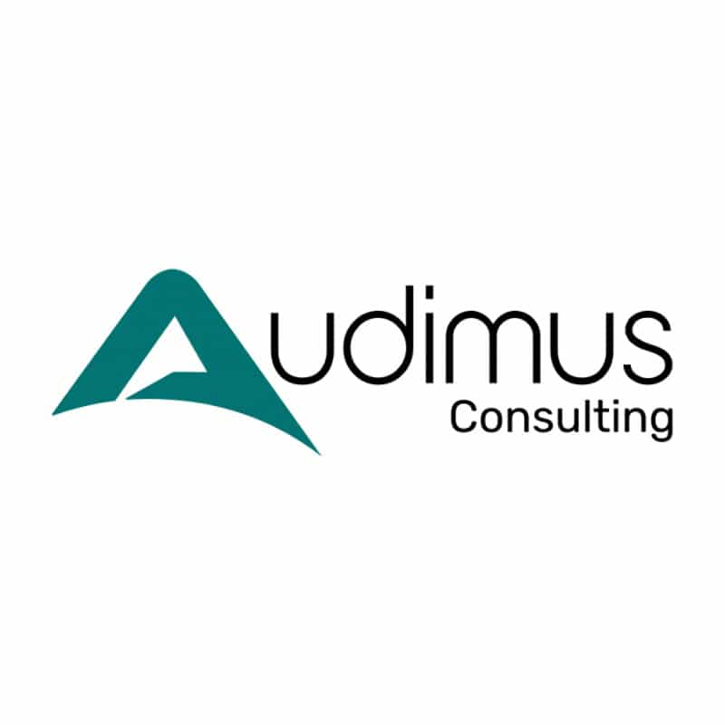 audimus consulting